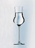 Grappa in einem Glas