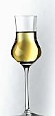 Grappa in a glass