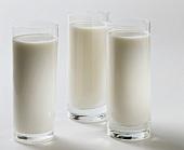 Three glasses of milk