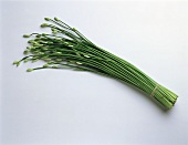A bunch of garlic chives