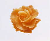 Rose carved from a carrot
