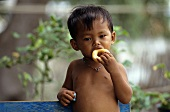 Small Thai boy eating sweet pastry