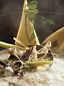 Steaming chicken soup with banana flowers & coconut milk