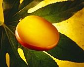 Half a mango on a green leaf