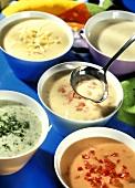 Various Bechamel sauces in bowls