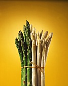 A bunch of white & green asparagus, yellow background