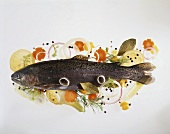 Trout, surrounded by raw vegetables, lemons & herbs