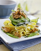 Lasagne sheets with tuna, cucumber and celery