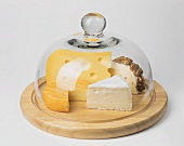 Various types of cheese under a cheese cover
