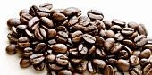 Coffee beans on light background