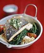 Halibut with herb sauce on vegetables