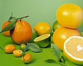 Colorful Citrus Fruit
