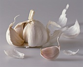 Garlic bulb and garlic cloves
