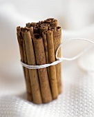 A bundle of cinnamon sticks (side view)