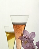 Two cocktails with sparkling champagne; purple flowers