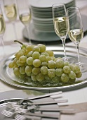 Champagne glasses with sugared green grapes on silver plate