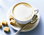 A cup of cappuccino with raw cane sugar cubes