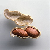 Peanut in shell