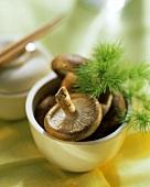 Shiitake mushrooms in white bowl; pottery box, chopsticks behind