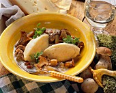 Mushroom stew with cheese dumplings on yellow plate