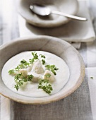 Riesling soup with pike-perch dumplings and fresh chervil