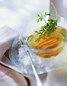 Chilled poultry consomme with parsley on ice