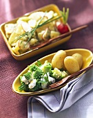 Romanesco with lemon sauce; potato salad with radishes