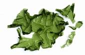 Green seaweed (Sea lettuce, Ulva lactuca)