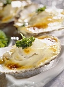 Oyster gratin with champagne sauce