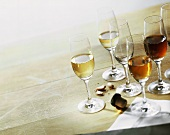 Various types of sherry in glasses
