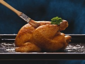 Basting roast chicken with a basting brush