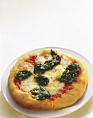 Pizza with cheese and spinach on plate