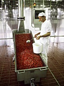 Processing frozen strawberries in jam factory