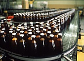 Beer bottles in filling and labelling plant