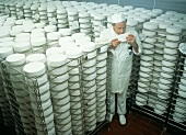Dairyman assessing soft cheese sample in maturing room