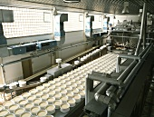 Production area at a large cheese dairy