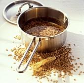 Getreide in Wasser einweichen