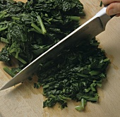 Chopping spinach with a knife