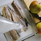 Pickling young herrings (matjes)