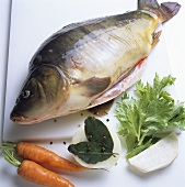 Fresh mirror carp with soup vegetables