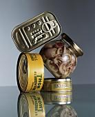 Tuna fish tins, sardine tins and a jar of seafood