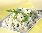 Risotto alla rucola (Risotto with rocket & balsamic vinegar)