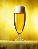 Light Beer in Beer Glass