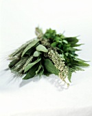 Herb bouquet: sage, mugwort, parsley, fern etc