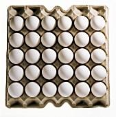 White Eggs in Carton
