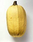 Spaghetti squash on white background