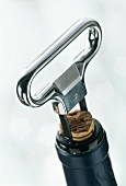 Corkscrew (cork remover) on wine bottle