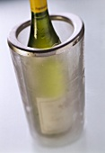 Acrylic wine cooler with white wine bottle