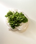 Fresh spinach leaves on a plastic bag