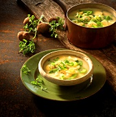Leek and potato soup in soup plate and copper pan